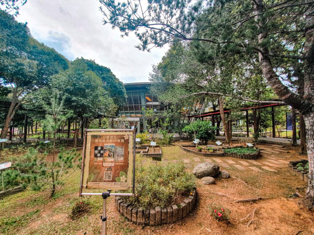 台東原生植物園 藥草區